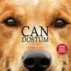 Can Dostum FullHD izle