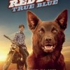 Red Dog True Blue FullHD Film izle