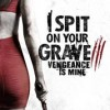 I Spit on Your Grave Vengeance is Mine FullHD İzle
