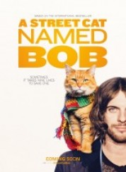 A Street Cat Named Bob 1080p Türkçe Dublaj FullHD İzle